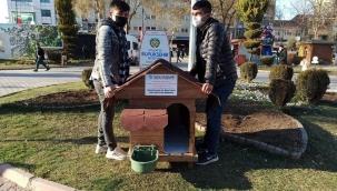 Ülkü Ocakları Sokak Hayvanlarını Unutmadı